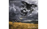 Виниловая пластинка LP David Gilmour - Rattle Thet Lock (00888751232914)