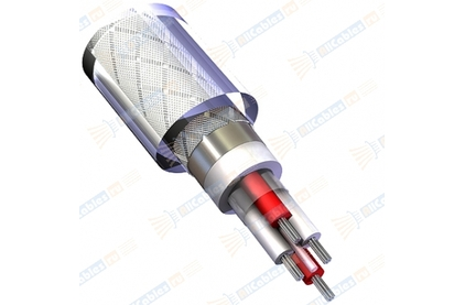 Отрезок акустического кабеля QED (арт. 3092) Reference Audio Evolution 0.58m