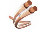Отрезок акустического кабеля Inakustik (арт. 5909) 004022 Premium Cuprum Transparent 2.5 0.97m