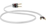 Акустический кабель Single-Wire Banana - Banana QED (Арт. SC-1515) Silver Anniversary XT Banana 1.5m