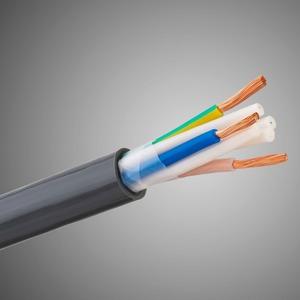 Отрезок силового кабеля Tchernov Cable (арт. 7281) Special 2.5 AC Power 0.42m