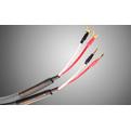 Акустический кабель Single-Wire Banana - Banana Tchernov Cable Special XS SC Bn/Bn 2.65m