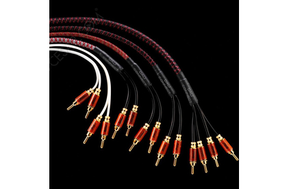 Кабель акустический Dali CONNECT SC RM230S